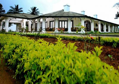 Parisons Plantation Experience by ABAD